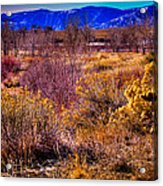 Nature At It's Best In South Platte Park Acrylic Print