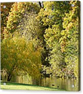 Nature Of The Fall Acrylic Print