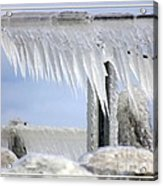 Natures Ice Sculptures1 Acrylic Print