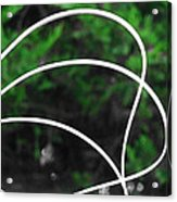 Nature's Natural Curves Acrylic Print