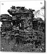 Natures' Ruins Acrylic Print