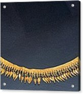 Spear-heads Necklace  Acrylic Print