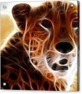 Neon Cheeta Acrylic Print