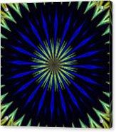 Nerius Acrylic Print