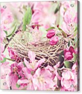 Nest In Soft Pink Acrylic Print