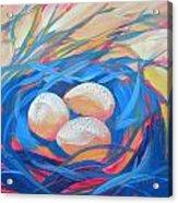 Nest Of Prosperity 4 Acrylic Print