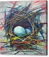 Nest Of Prosperity 8 Acrylic Print