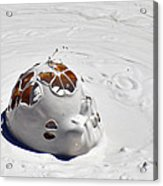 Nesting Mud Bubbles In Yellowstone's Artist Paint Pots Acrylic Print by Bruce Gourley