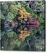 New England Fall Reflection Acrylic Print