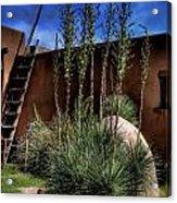 New Mexico Adobe Acrylic Print