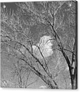 New Mexico Series - A Cloud Behind Black And White Acrylic Print
