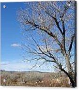 New Mexico Series - A View Espanola Acrylic Print