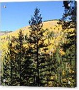 New Mexico Series - Autumn On The Mountain II Acrylic Print
