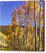 New Mexico Series - Autumn On The Mountain Acrylic Print