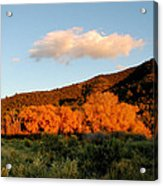 New Mexico Series - Cloud Over Autumn Acrylic Print