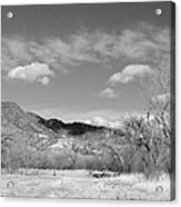 New Mexico Series - Winter Desert Beauty Black And White Acrylic Print