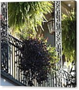 New Orleans Afternoon Light Acrylic Print