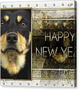 New Year - Golden Elegance Australian Kelpie Acrylic Print by Renae Laughner