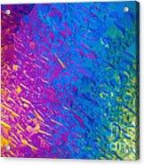 Nicotine Tartrate Lm Acrylic Print