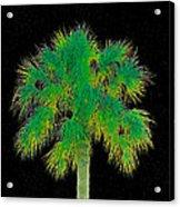 Night Of The Green Palm Acrylic Print