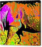 Night Of The Rhino Acrylic Print