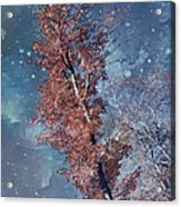 Nighty Tree Acrylic Print