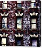 Nine  Windows Acrylic Print