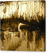 Ninigret Pond Acrylic Print
