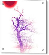 Nippon Sunset 2 Acrylic Print