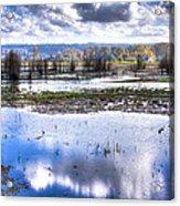 Nisqually Wildlife Refuge P13 Acrylic Print
