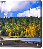 Nisqually Wildlife Refuge P24 Acrylic Print