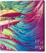 Nitroglycerin Acrylic Print