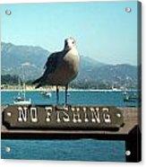 No Fishing Acrylic Print