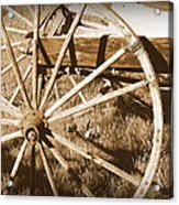 No Gas Needed Buggy Wheels Acrylic Print by Cindy Wright