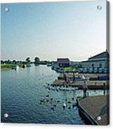 Norfolk Broads Acrylic Print
