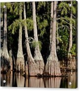 North Carolina - Lake Acrylic Print
