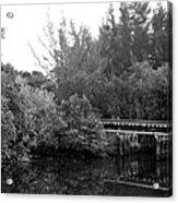 North Fork River Acrylic Print