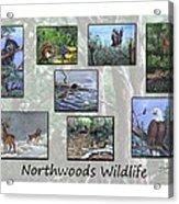 Northwoods Wildlife Acrylic Print