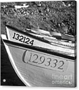 Nose To Nose Acrylic Print by Gordon Wood
