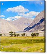 Nubra Valley Ladakh Acrylic Print