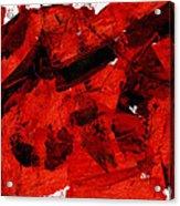 Nuclear Anialation Acrylic Print
