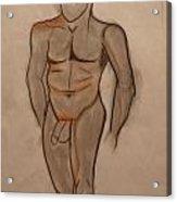 Nude Male Drawing Acrylic Print