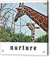 Nurture Acrylic Print