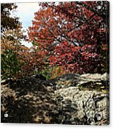Oak Rock Acrylic Print