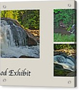Oakwood Exhibit Acrylic Print