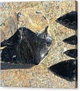 Obsidian Acrylic Print