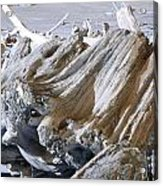 Ocean Driftwood Landscape Art Prints Coastal Views Acrylic Print