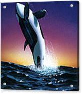 Ocean Leap Acrylic Print