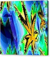 Ocean Stars Acrylic Print