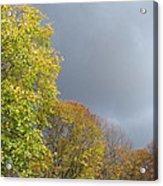 October Acrylic Print